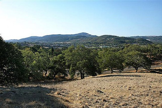 1845 San Ramon_View2 (Small)