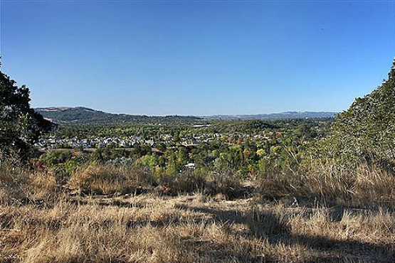 1845 San Ramon_View8 (Small)