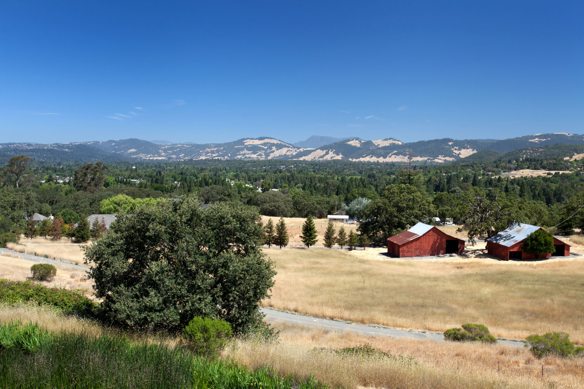 Bennett Valley Acreage For Sale