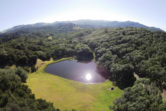 Sonoma County Ranch for sale