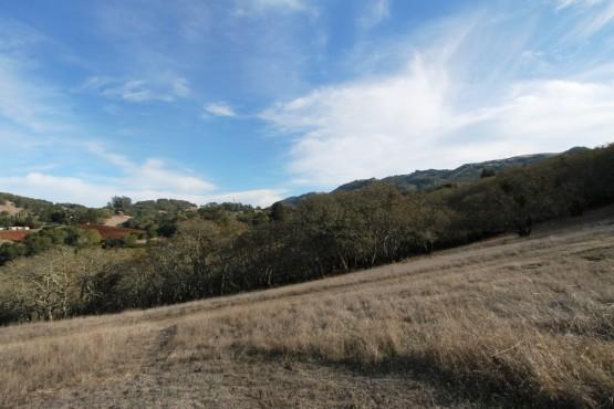 Bennett Valley Estate Parcel