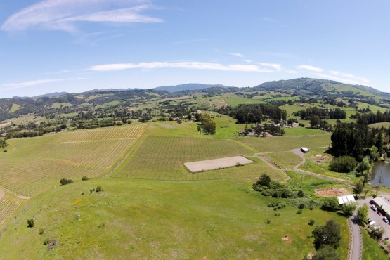 Bennett Valley Equestrian and Vineyard Estate