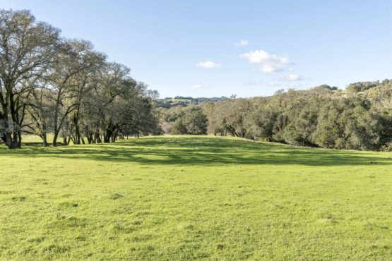 Healdsburg Chalk Hill 77 Acre Ranch