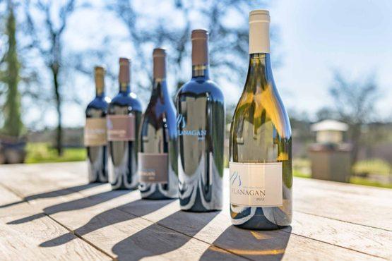 Fabulous Wine Country Lake & Vineyard Estate