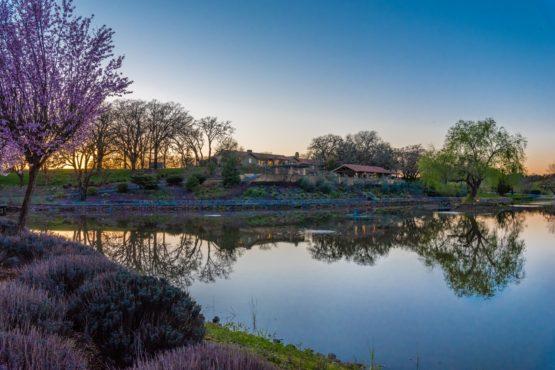 Healdsburg Luxury Property