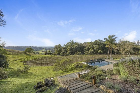 Sonoma Wine Country Vineyard Estate