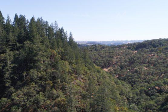 12135 Highway 128, Healdsburg CA 95448