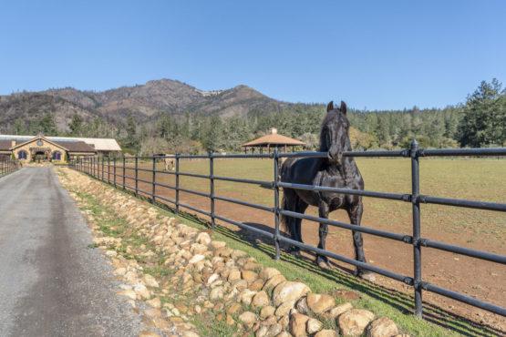 Premier Kenwood Equestrian & Aviators Retreat