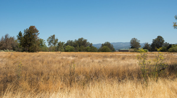 Sonoma Valley Developement Opportunity