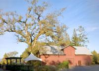 Everett Ridge Vineyards and Winery in Healdsburg