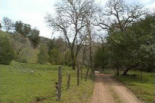 96 Acre Healdsburg Property