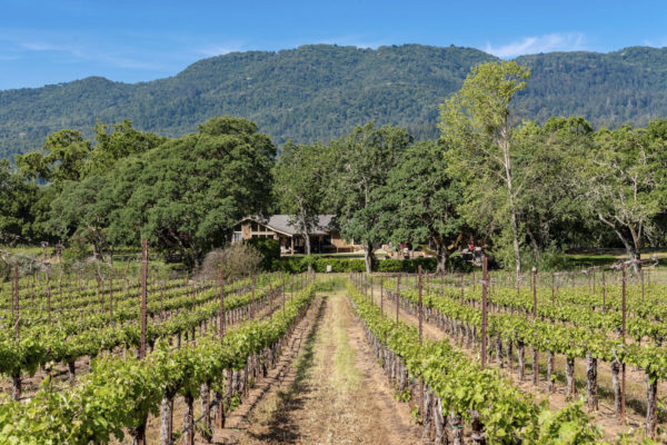 Introducing Trestle Glen Vineyard Estate & Family Compound!